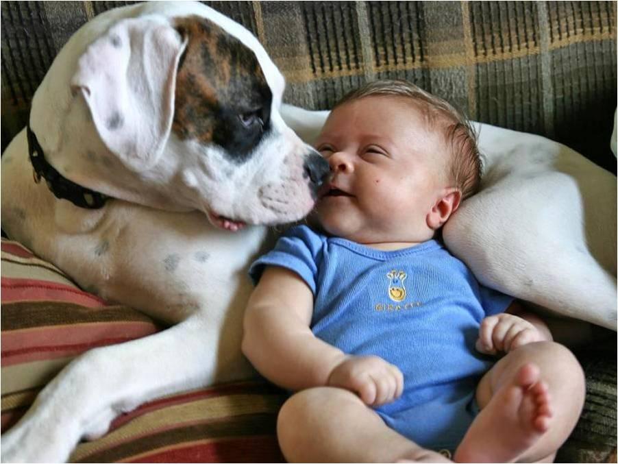 ritorno a casa con bebè